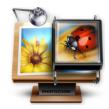 PhotoZoom Pro (ͼƬ����Ŵ�)v8.0.4 �����ر��