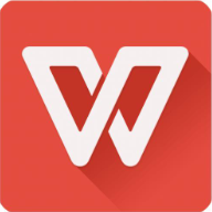 WPS Office 2019  v11.8.2.8593 政府专业版