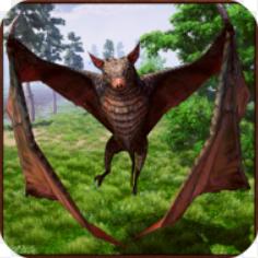 蝙蝠模拟器