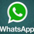 whatsapp v2.2108.8 电脑版