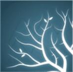Lumion11(3D渲染软件)